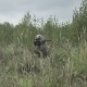 War In The Grass Attacking Enemy. Soldier Shoots In a Field