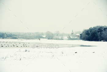 Winter landscape on Lake next to Havel River (Germany)