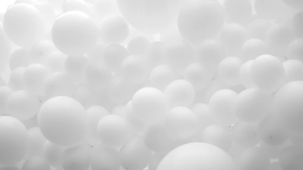 Download Lot Of White Balloons Fastened Together nulled download