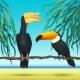 Toco Toucan And Rhinoceroc, Bill, Realistic Birds