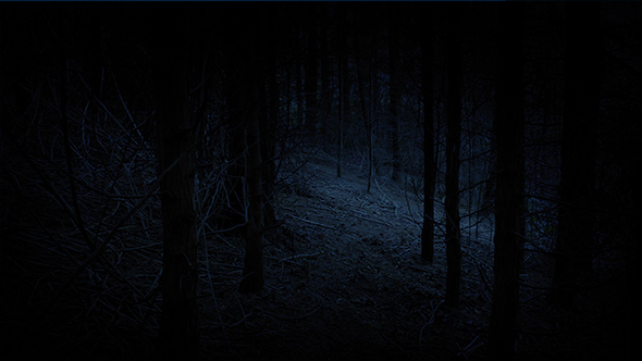 Download Walking Through Creepy Woods In The Dark nulled download