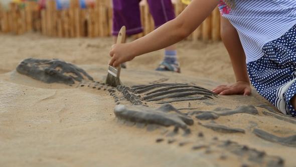 Download Archaeological Excavation of Dinosaur Bones nulled download
