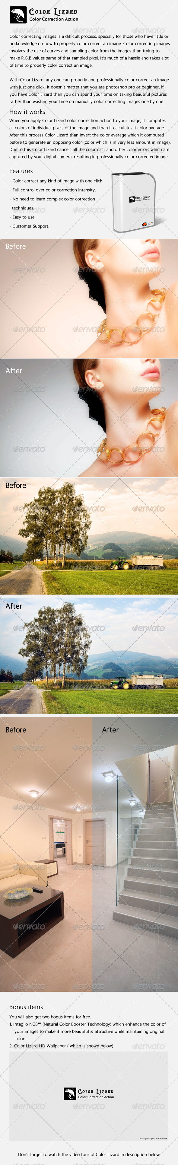 GraphicRiver Color Lizard Color Correction Action 405747