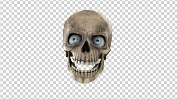 Download Animated Skull With Eyes nulled download