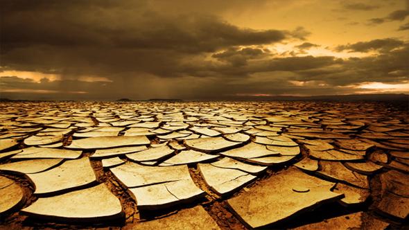 Download Desert Storm nulled download