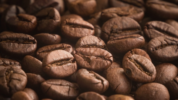 Download Roasting Coffee Beans nulled download