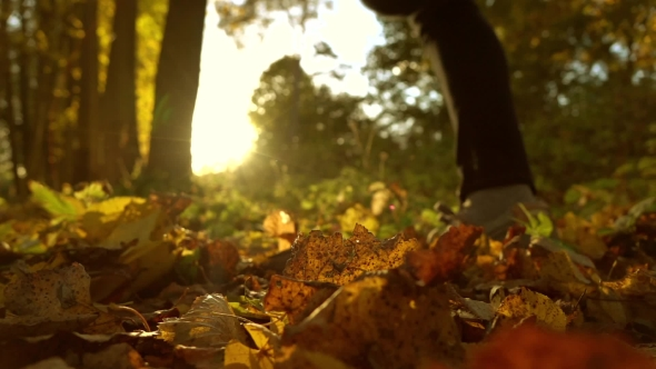 Download Defocused Girl Running On Fallen Autumn Leaves In Sunny Forest nulled download