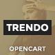 Trendo - Minimalistic Fashion Store OpenCart Theme