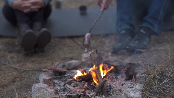 Download Couple Fried Sausages On Bonfire In The Forest nulled download