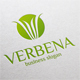 Abstract Letter V Logo - Verbena