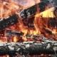 Bonfire Of Birch Firewood