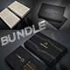 2 in 1 Business Card Bundle P-1