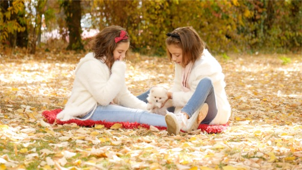 Download Girls Playing With a Puppy nulled download