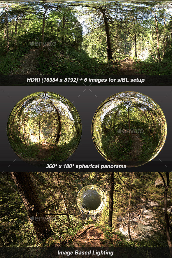 Wolfsklamm Forest HDRI - 3DOcean Item for Sale