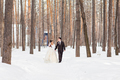 Wedding in winter. Newlyweds in the snowy park