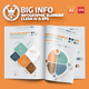 Big Infographics Elements Design