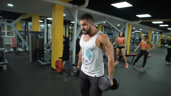 Download Muscular Man With Dumbbells nulled download