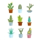 Cartoon Cactus, Desert Plants Vector Icons