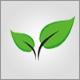 ecologygraphics