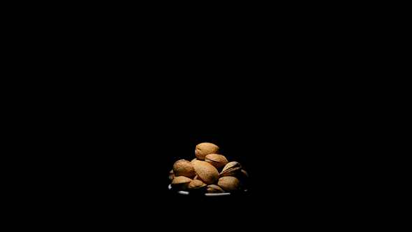 Download Almonds Nuts in Rotation nulled download