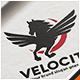 Flying Horse Logo