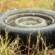 Car Tyre Lying On The Grass