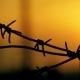Barbed Wire Prison Sunset Orange