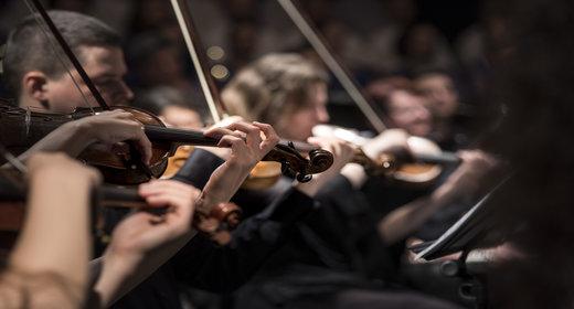 Elegant Orchestra