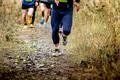 group runners running uphill