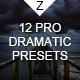 12 Pro Dramatic Presets