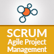 SCRUM - Agile Project Management