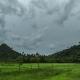 Cloudy In Tropical Jungle Mountain Of Palawan Island