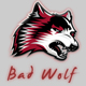 BadWolf_Productions