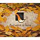 The Autumn Stone Logo