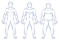 Body Types Ectomorph Mesomorph Endomorph
