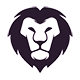LionCoders