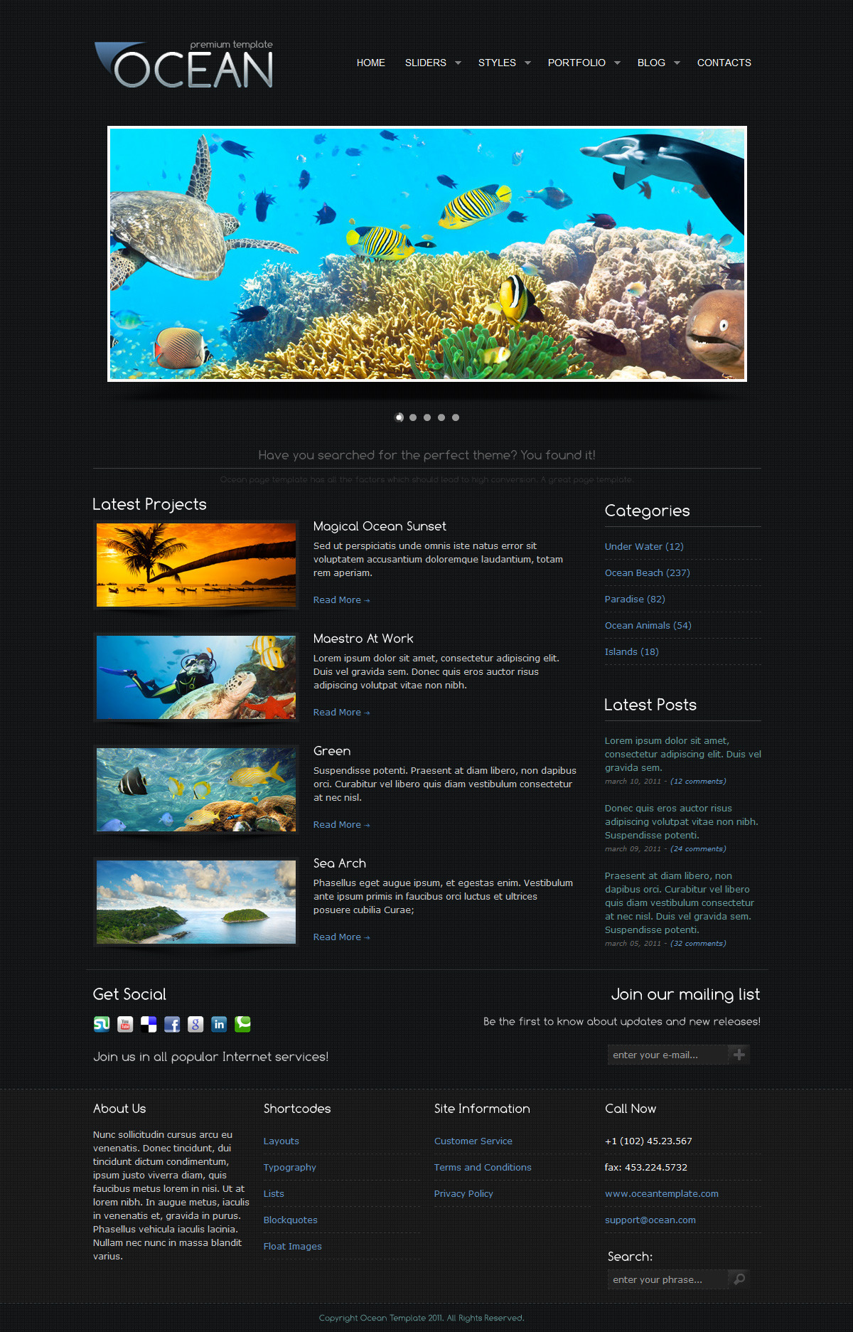 Ocean Premium Template - Home page design