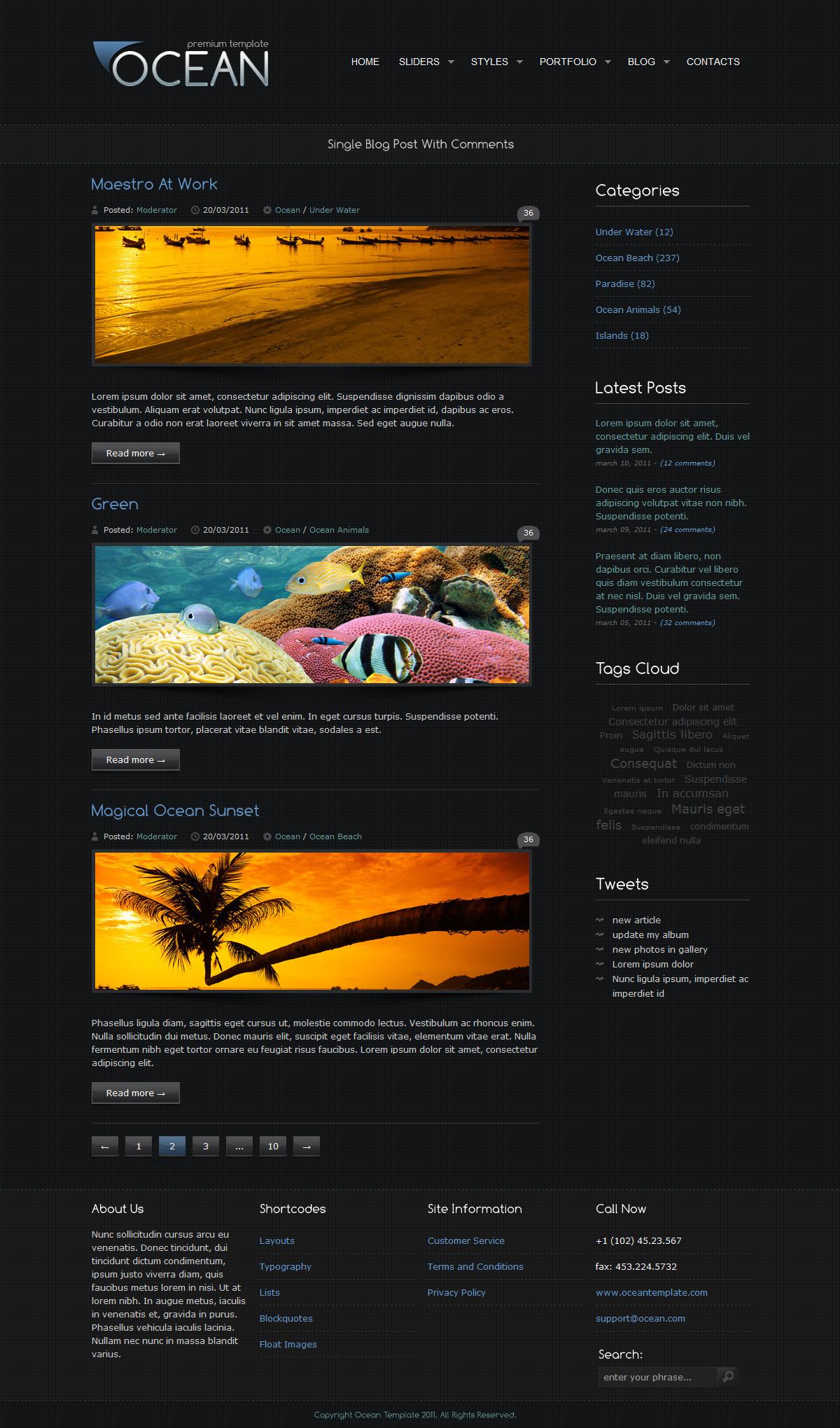 Ocean Premium Template - Blog