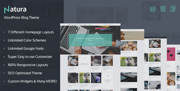 Natura – Responsive WordPress Blog Theme (Personal) images