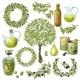 Olive Organic Elements Set