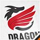 Dragon Wing Crest Logo