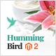 Hummingbird - Responsive Magento 2 Theme