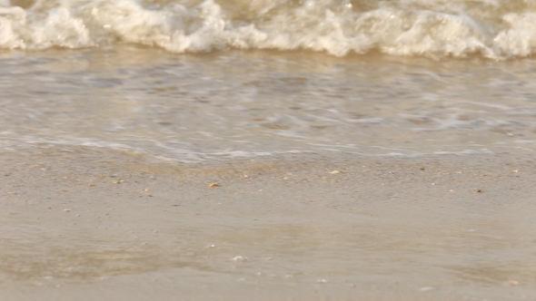 VideoHive Lapped By The Waves Of The Sea Coast 18681280