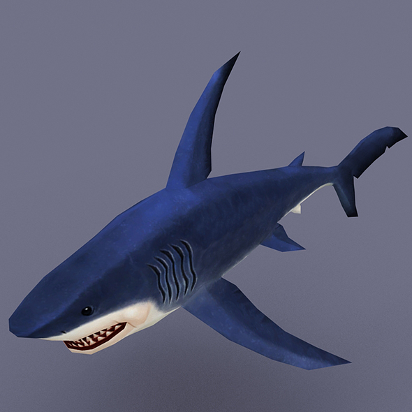 Shark blue - 3DOcean Item for Sale