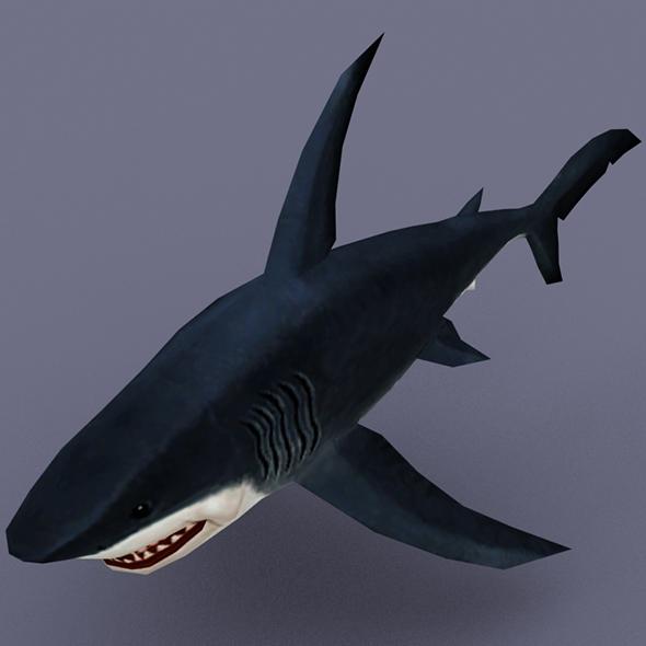 Shark cave - 3DOcean Item for Sale
