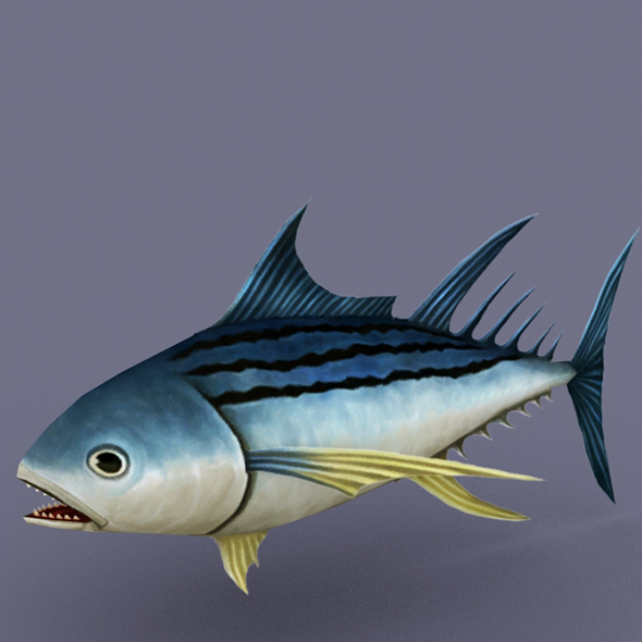 Striped Tuna dark - 3DOcean Item for Sale