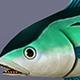 Tuna Emerald