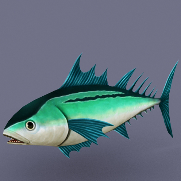 Tuna Emerald - 3DOcean Item for Sale