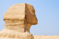 Profile of the great Sphinx. Landscape with ruined statue and a