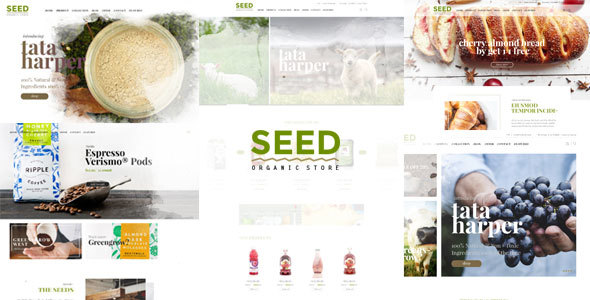 Seed – Organic WordPress Theme (WooCommerce)
